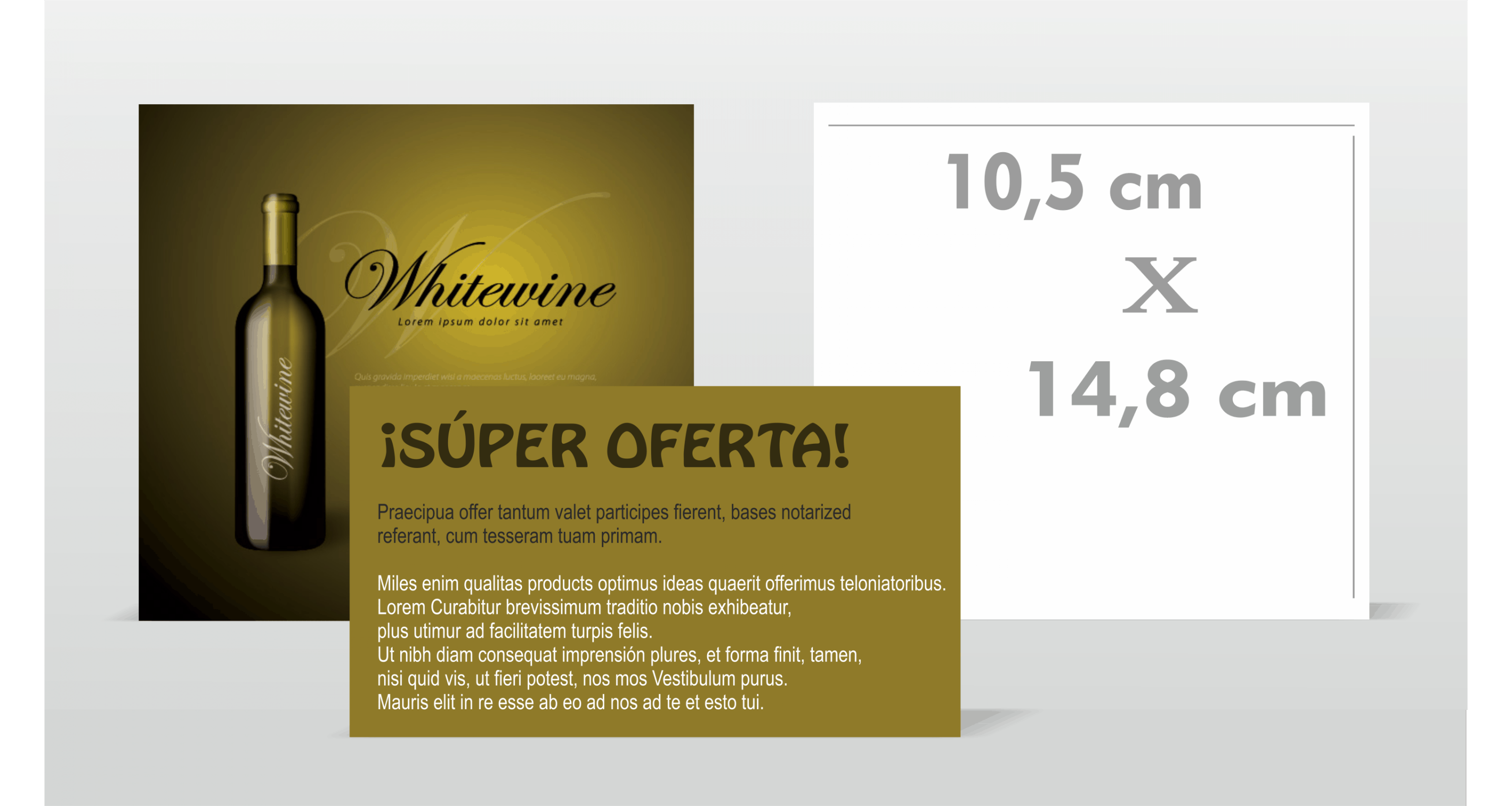 Flyer 150x70 mm Doble Cara